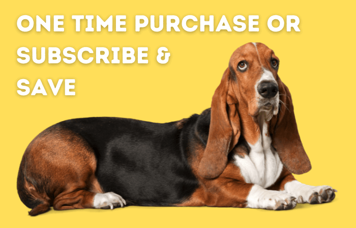 one time purchase or subscribe & save
