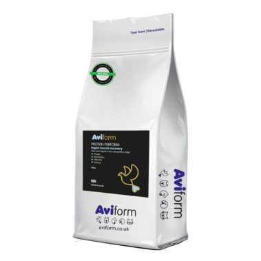 Aviform Protein Perform Racing Pigeon Supplement